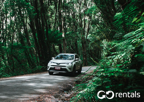 See more of the Lower South with Go Rentals! 15% off car hire*