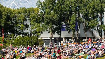 International Cricket in Dunedin!